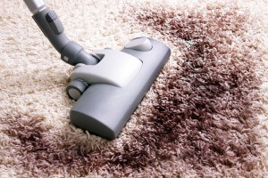 Best Time To Clean Steamer S Carpet Care San Antonio