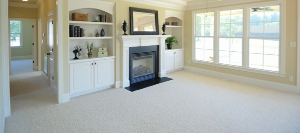 Steamer's Carpet Care, San Antonio Carpet Cleaning, carpet cleaning