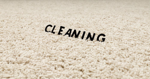 carpet cleaning companies, pet odor removal, carpet cleaning